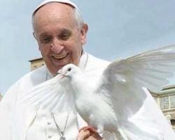 papa-francesco-colomba-20130918_131606